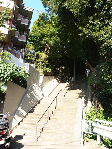 国分寺崖線の崖具合を楽しめる階段7