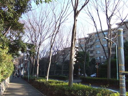 堀田坂 (NO.84) 4