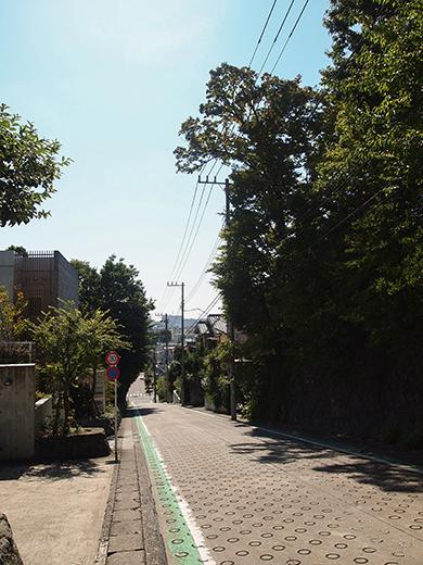 堂ヶ谷戸坂(NO.256)5
