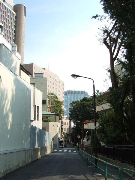 錦華坂(NO.217)2