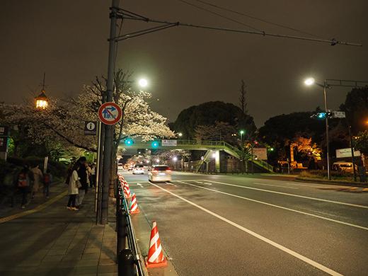 九段坂の夜桜と千鳥ヶ淵1