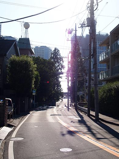 まむし坂(NO.252)3