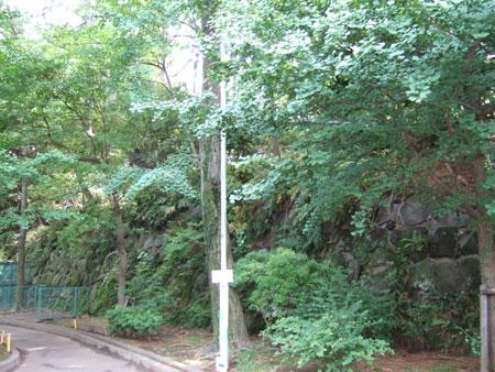 本門寺公園内の階段3