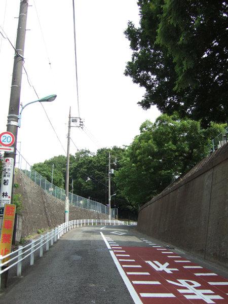 御廟所と歴代墓所の間を通る坂道3