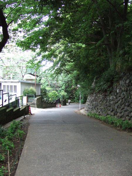 上野東照宮の女坂?5