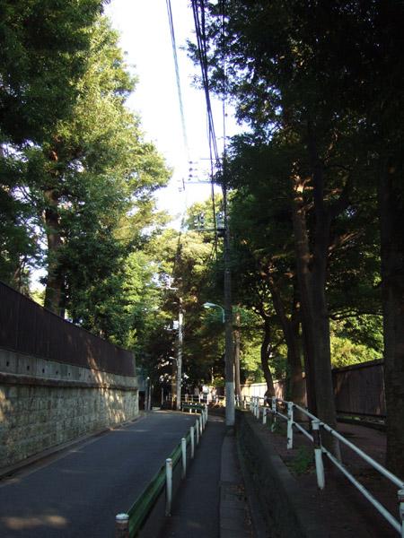 目切坂(NO.154)3