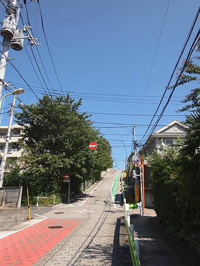 岡本三丁目の坂 [東京富士見坂](NO.257)3