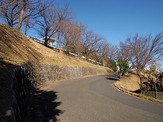 聖蹟桜ヶ丘の天守台(関戸城跡)の階段と坂道6