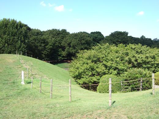 深大寺の低山3