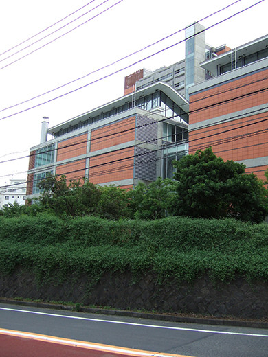 国立新美術館前の坂道4