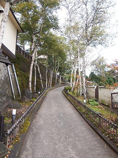望雲坂(NO.260)8