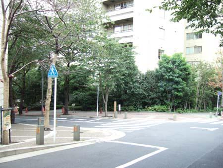 桜坂 (NO.114)3