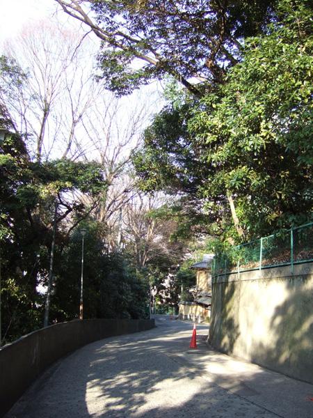 愛宕新坂 (NO.126) 4