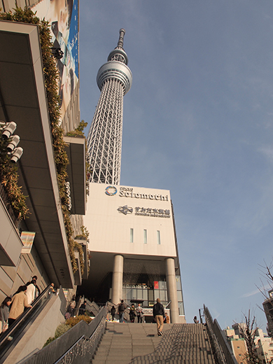 ハナミ坂(NO.271)5