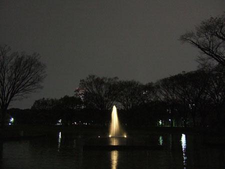代々木公園ライトアップ3