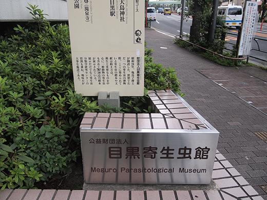 金毘羅坂(NO.269)7