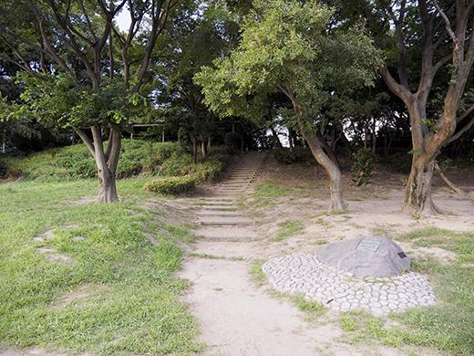 二子玉川の河川敷からの富士山と水害の記憶7
