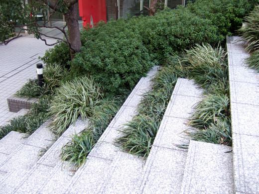 泉ガーデンの階段いろいろ1