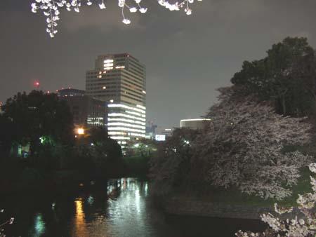 九段下の夜桜4