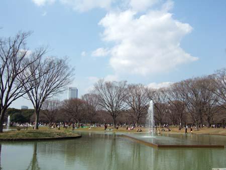 春まじかの代々木公園1