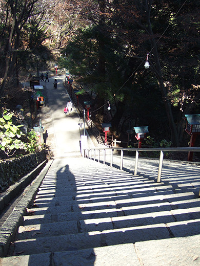 高尾山の男坂(NO.248)4