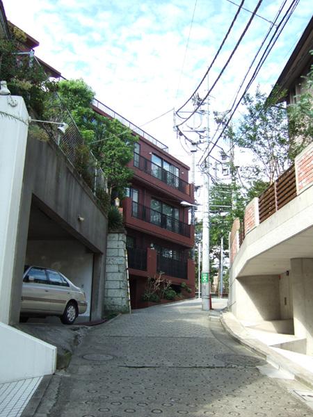 ネギ山坂(NO.176)2