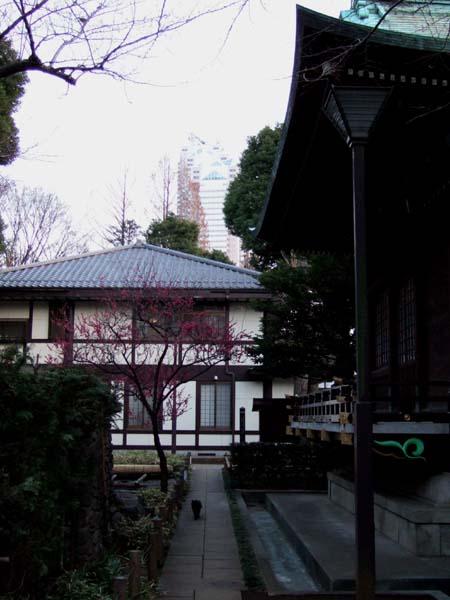 新宿中央公園のお寺3