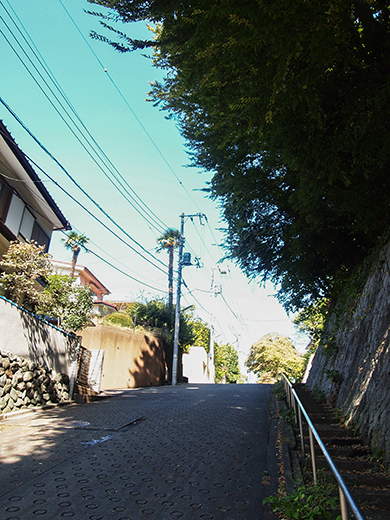無名坂(NO.255)3