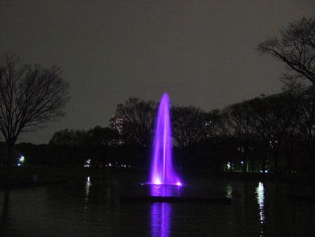 代々木公園ライトアップ5