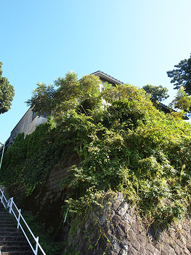 行善寺横の階段-7