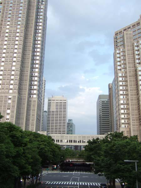 ひさしぶりの新宿中央公園界隈1