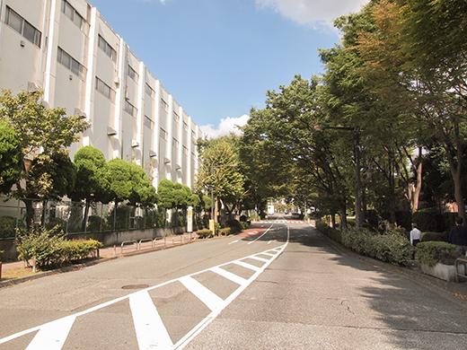 新茶屋坂(NO.264)4
