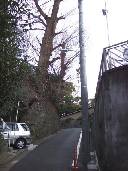 本氷川坂 (NO.130) 4