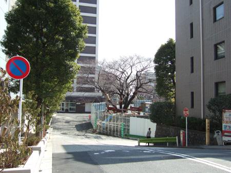 三分坂 (NO.133)5