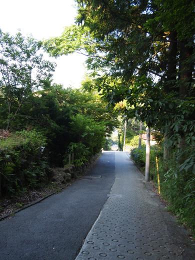 坂道を箱根登山ケーブルカーとともに2