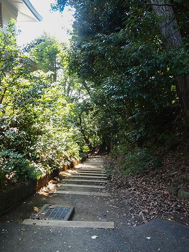 おんな坂(NO.254)1