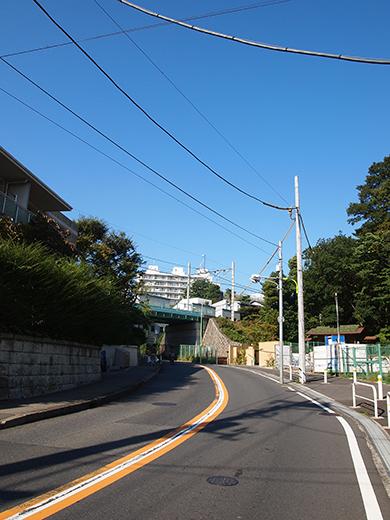 まむし坂(NO.252)1