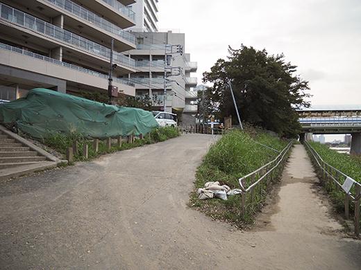 二子玉川の河川敷からの富士山と水害の記憶5
