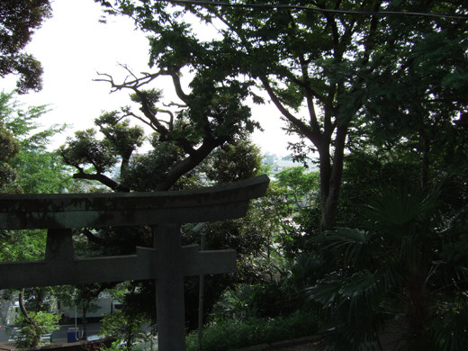 子安八幡神社の急階段8