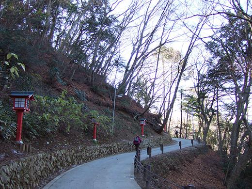 高尾山の女坂(NO.249)1