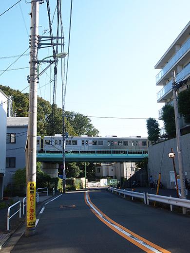 まむし坂(NO.252)5