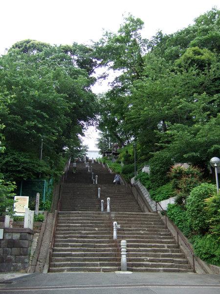 此経難持坂(NO.228)8