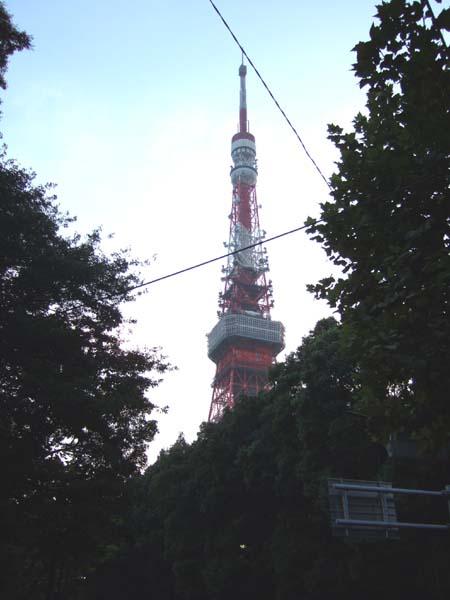 銀杏坂 (NO.111)5