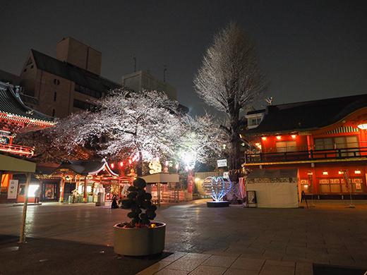神田明神男坂の夜散歩3