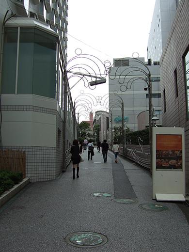いちょう坂(NO.244)1