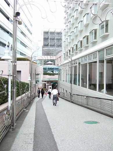 いちょう坂(NO.244)3