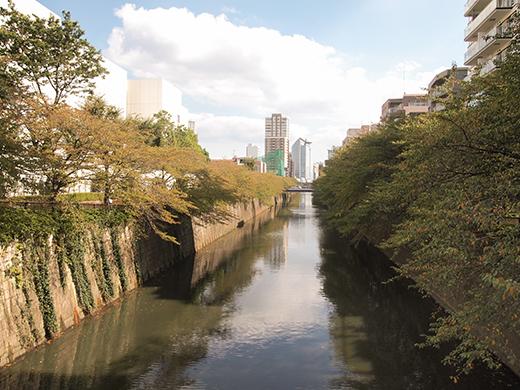 新茶屋坂(NO.264)3