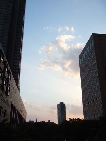 ひさしぶりの新宿中央公園界隈2
