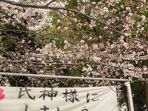 多摩川浅間神社の女坂かも?13