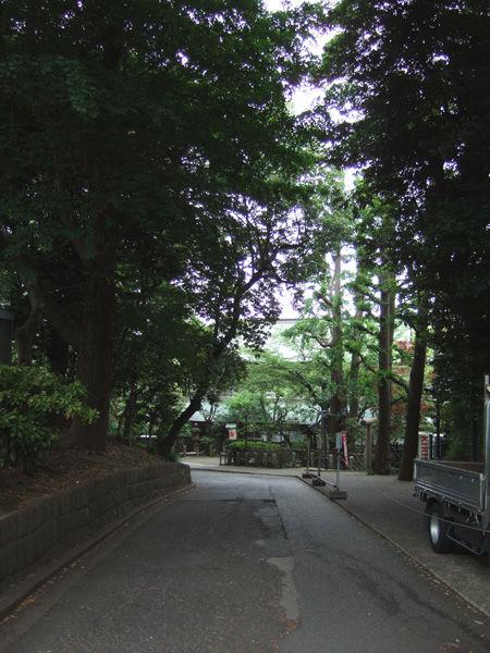 忍坂(NO.194)1
